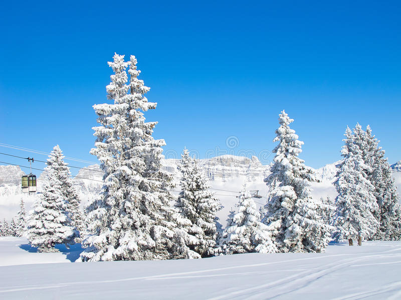 Download Skiing slope stock image. Image of outside, holiday, mountain - 21297737