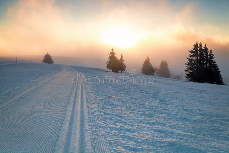 Skiing snow path and sunlight royalty free stock photo