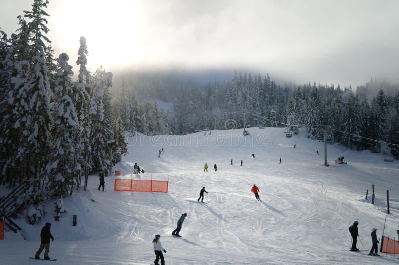 Skiing at Whistler. Shot at Whistler, British Columbia royalty free stock photo
