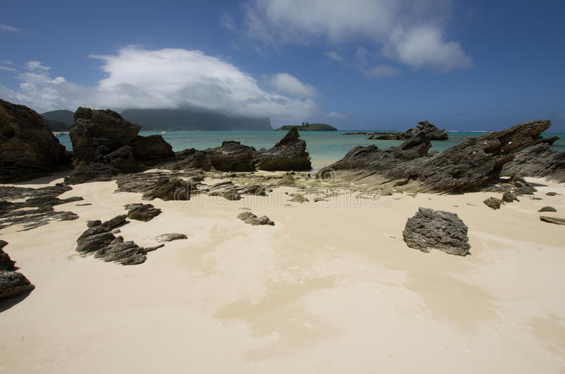 Skiktad calcarenite på lagunstranden Lord Howe Island arkivbild