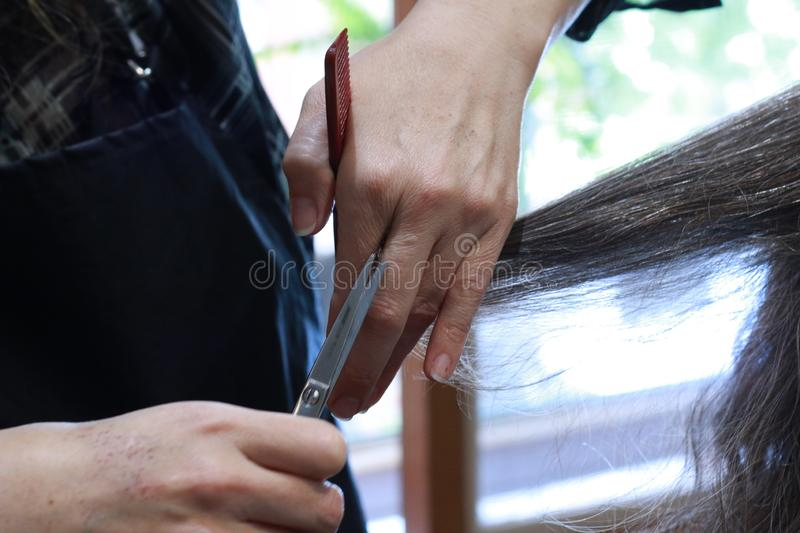 skilled Hands of a hairdresser cutting the curly wavy hair of a customer with hand scissors and a comb royalty free stock photos