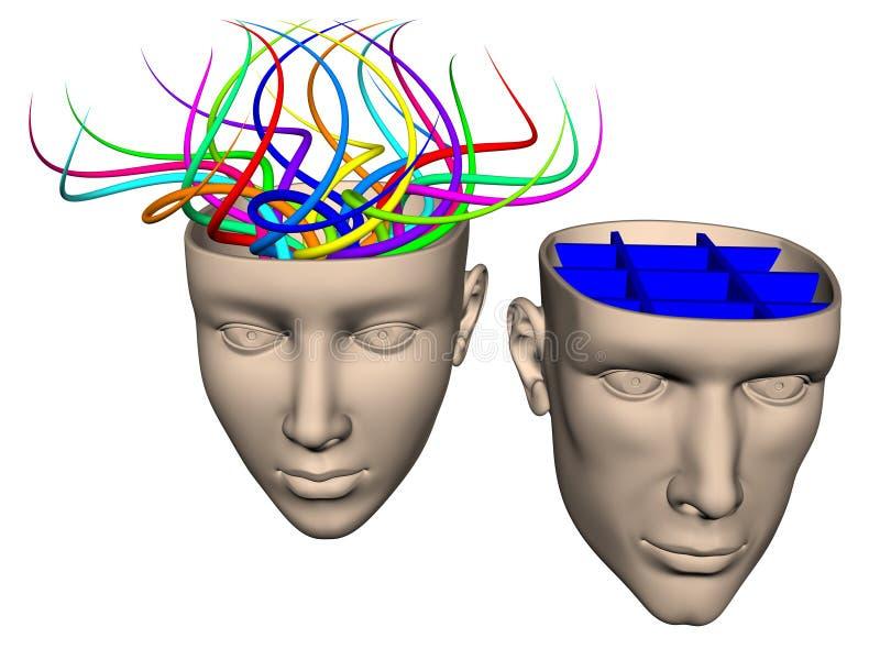 Skillnad mellan hjärnan av kvinnan och mannen - cartoo stock illustrationer
