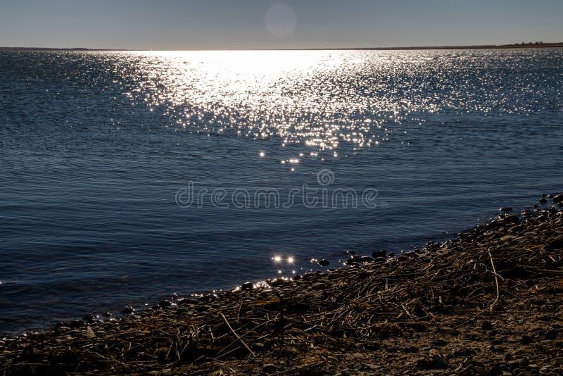 Skimra vatten, sjöMcGregor provinsiell rekreationsområde, Alberta, Kanada arkivfoton