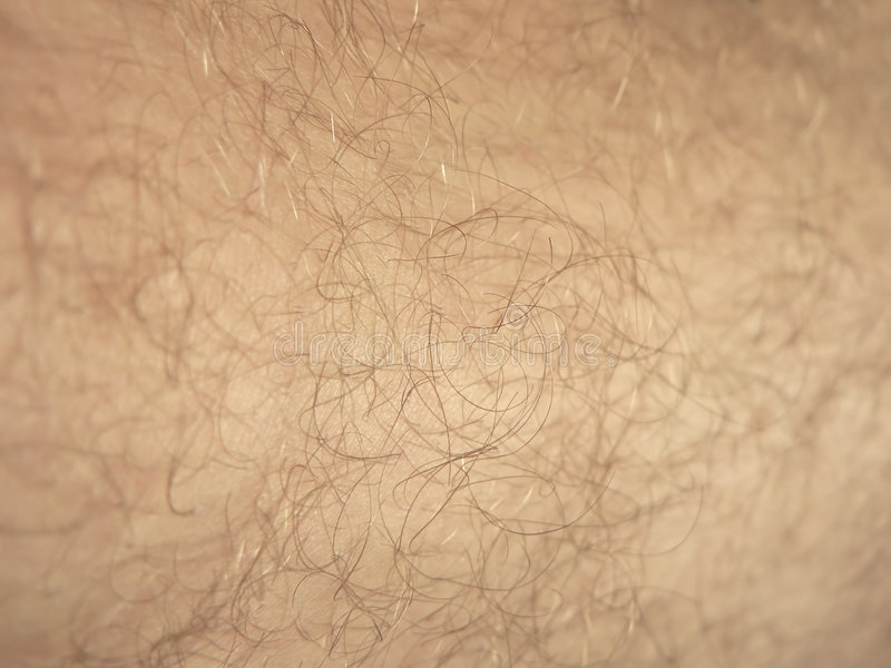 Download Skin backgroung stock image. Image of leather, person - 5088501