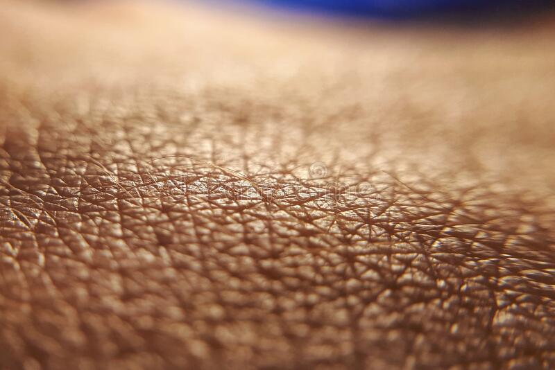 Skin cancer concept. Close up human skin. Macro epidermis texture. Pores and folds of human skin. Dry skin royalty free stock photo