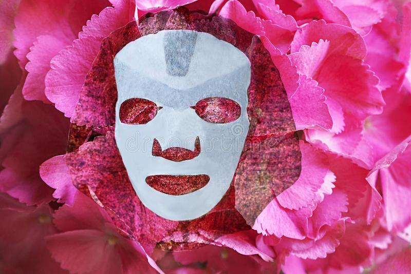 Skin care flat lay with facial sheet mask and pink, lilac, purple hydrangea flower background stock photography
