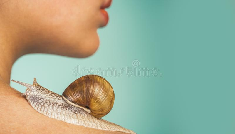 Skin care. Massage with snail. Skincare repairing. Healing mucus. Having fun with adorable snail. Spa and wellness. Cosmetics and snail mucus. Cosmetology stock images