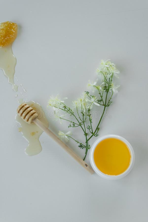 Skin care products with extract of honey and wild flowers. Healthy organic remedy. Superfood for the skin stock photography