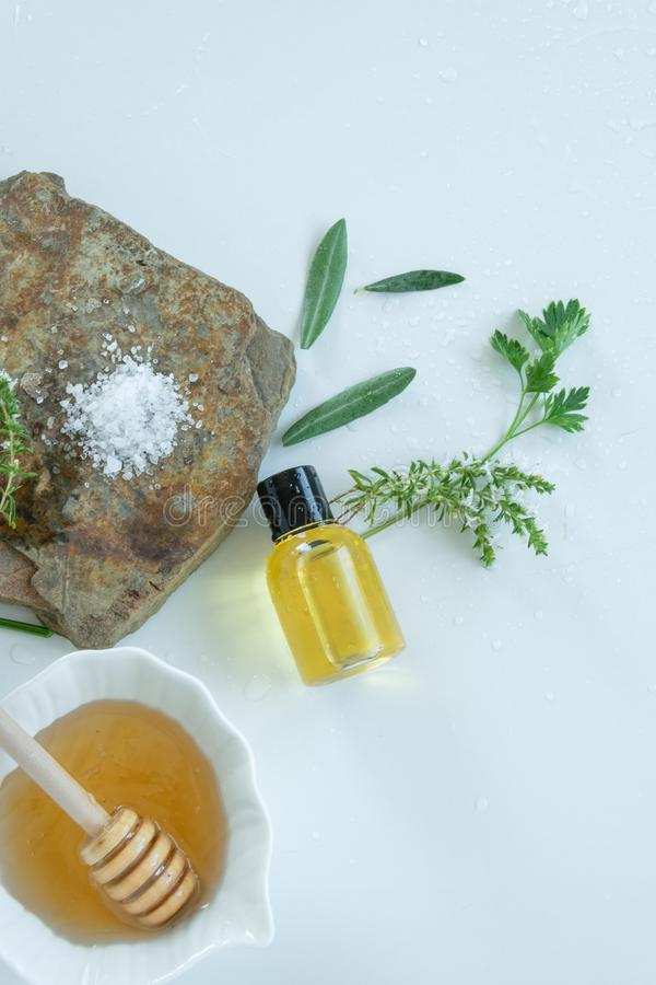 Skin care products with natural products and extracts . Healthy organic remedy. Superfood for the skin royalty free stock image
