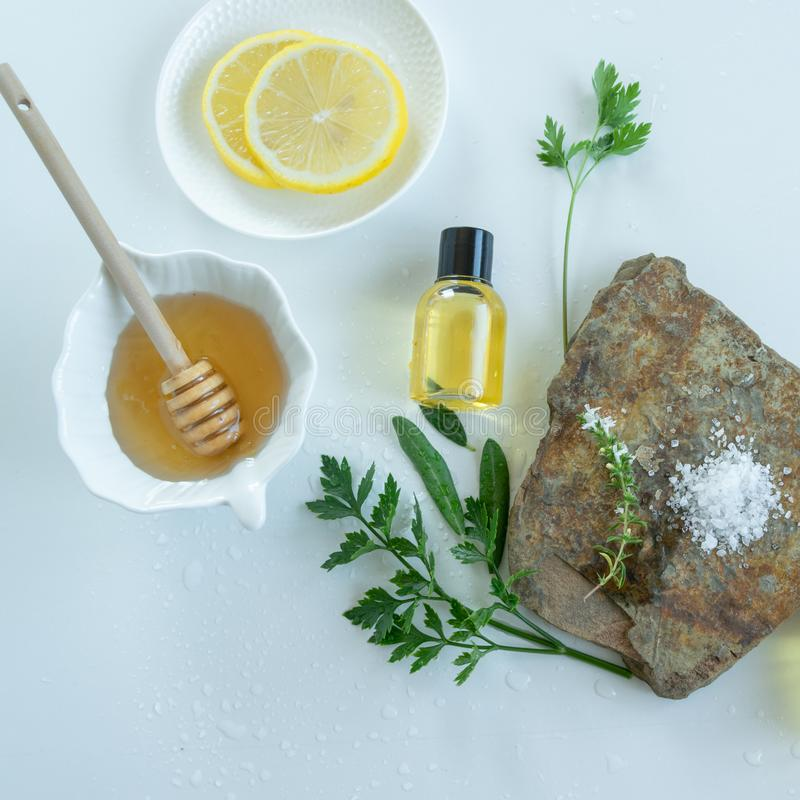Skin care products with natural products and extracts . Healthy organic remedy. Superfood for the skin royalty free stock images