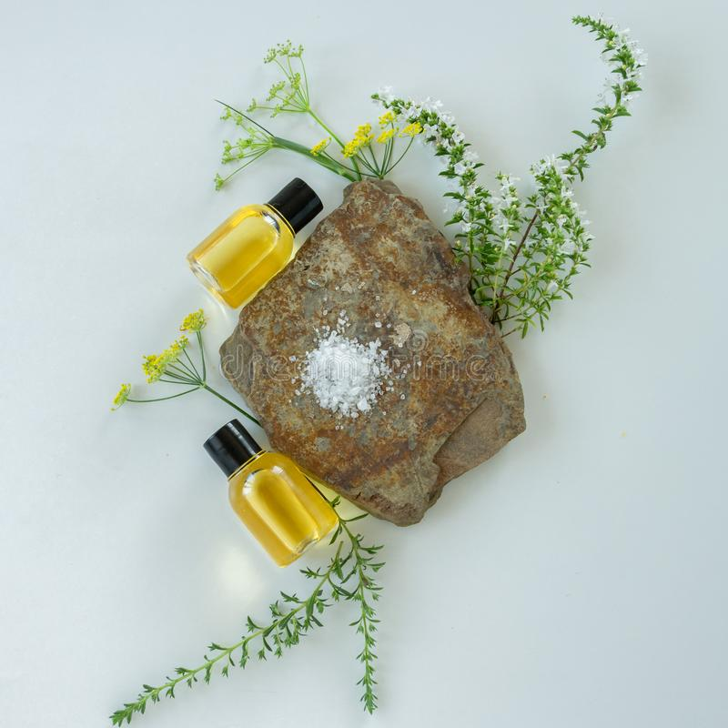 Skin care products with natural products and extracts . Healthy organic remedy. Superfood for the skin stock photography