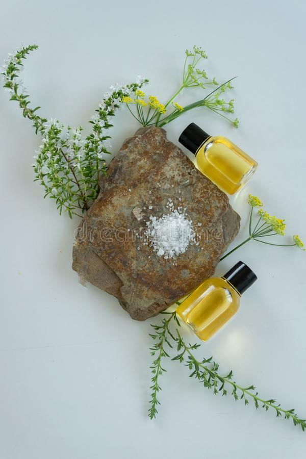 Skin care products with natural products and extracts . Healthy organic remedy. Superfood for the skin stock images