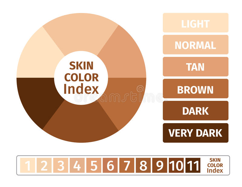 Skin color index , infographic . 3 chart of skin royalty free illustration