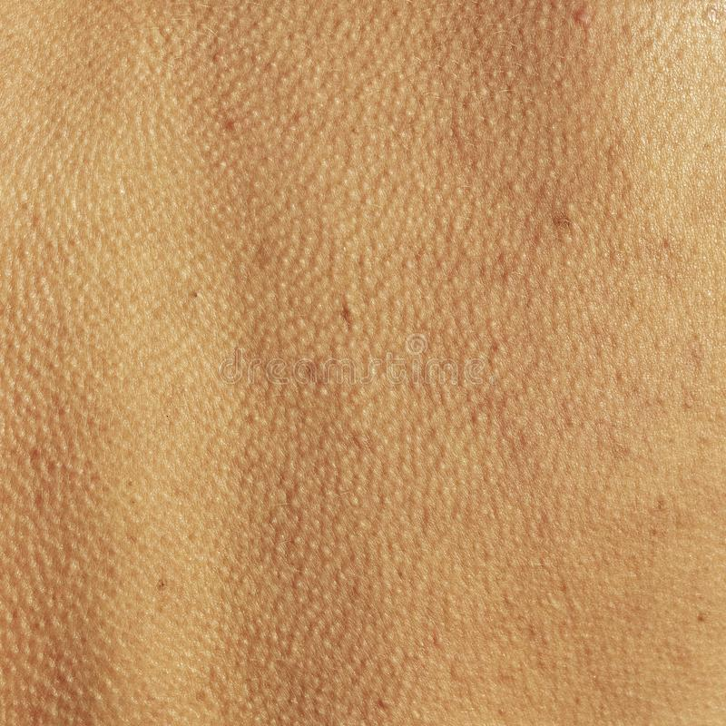 Abstract background skin of an human spine. Skin of an human spine. Close up view stock image