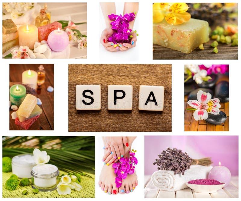 Skin royalty free stock image