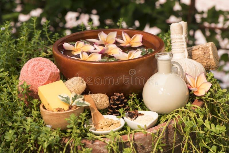Skin Spa met Thanaka, zeep en verse melk, behandelingen op natuurlijke achtergrond royalty-vrije stock fotografie