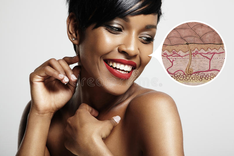 Skin structure of a skin royalty free stock images
