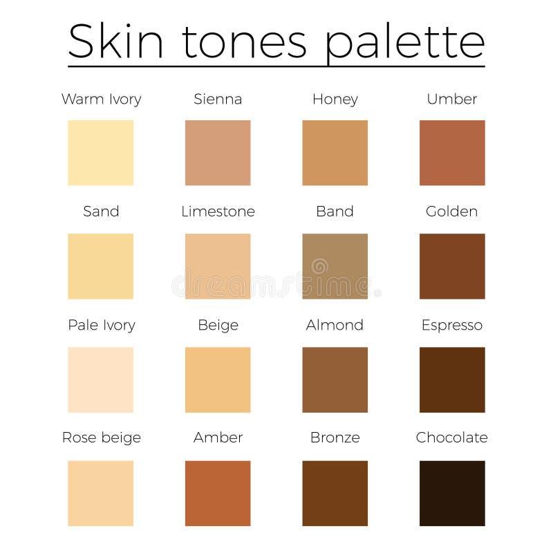 Skin Tones Color Palette Vector Stock Vector