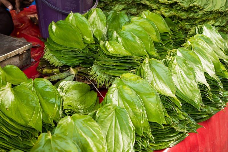 Skinande och gröna paan eller betelsidor i färgrik indisk marknad arkivfoton