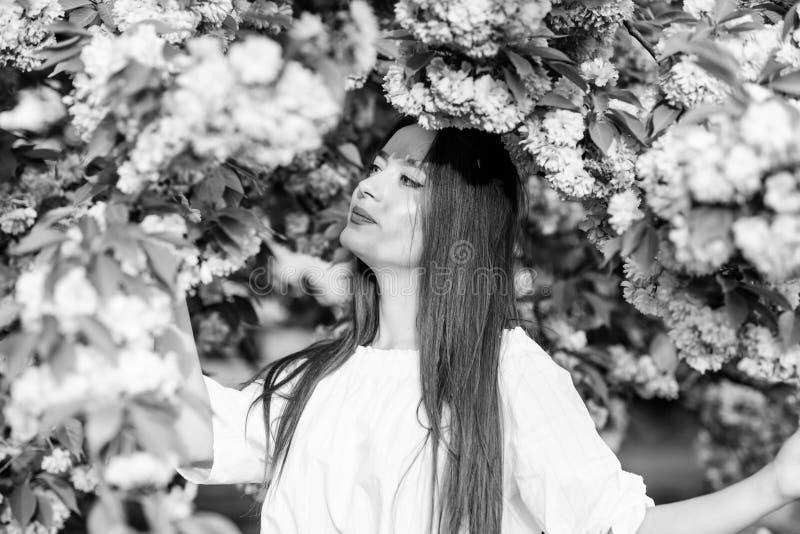 Skincare και SPA Φυσικά καλλυντικά για το δέρμα η γυναίκα ανθίζει την άνοιξη την άνθιση κορίτσι στο λουλούδι κερασιών Άνθιση δέντ στοκ φωτογραφία με δικαίωμα ελεύθερης χρήσης