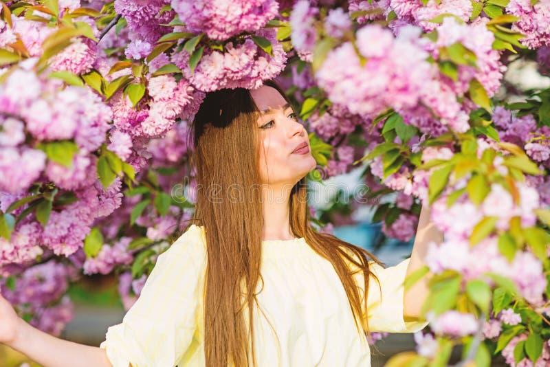 Skincare και SPA Φυσικά καλλυντικά για το δέρμα η γυναίκα ανθίζει την άνοιξη την άνθιση κορίτσι στο λουλούδι κερασιών Άνθιση δέντ στοκ εικόνες με δικαίωμα ελεύθερης χρήσης