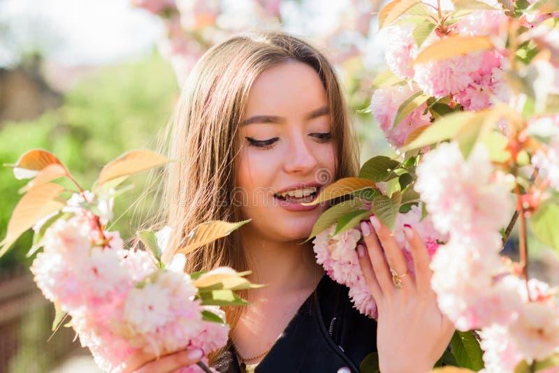 Skincare и спа r Девушка в цветке вишневого цвета Зацветать дерева Сакуры Мягкий и нежный стоковое фото