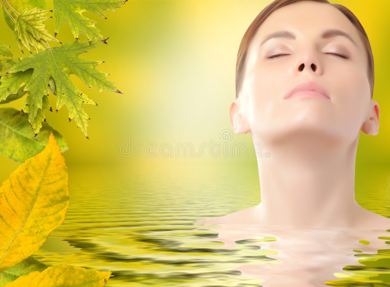 Download Skincare stock image. Image of leaf, flora, lifestyle - 6388077
