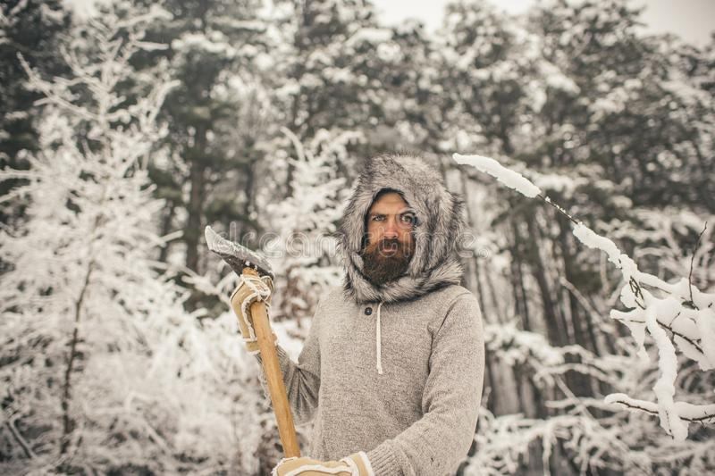 Skincare and beard care in winter, beard warm in winter. Bearded man with axe in snowy forest. Camping, traveling and winter rest. Temperature, freezing, cold royalty free stock image