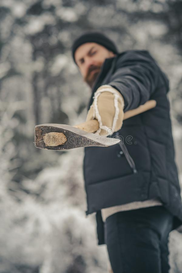 Skincare and beard care in winter, beard warm in winter. Camping, traveling and winter rest. Bearded man with axe in snowy forest. Temperature, freezing, cold royalty free stock photos