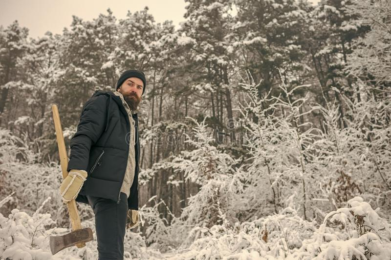 Skincare and beard care in winter, beard warm in winter. Man lumberjack with ax. Temperature, freezing, cold snap, snowfall. Bearded man with axe in snowy royalty free stock images