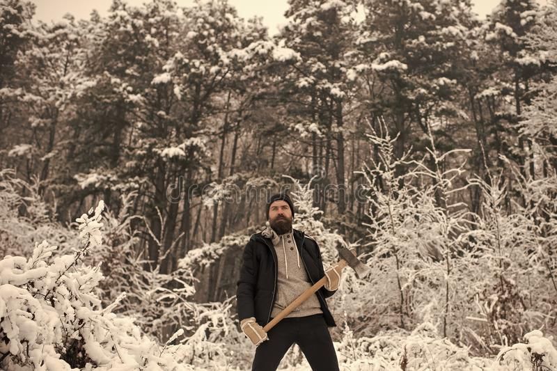 Skincare and beard care in winter, beard warm in winter. Temperature, freezing, cold snap, snowfall. Camping, traveling and winter rest. Bearded man with axe stock images