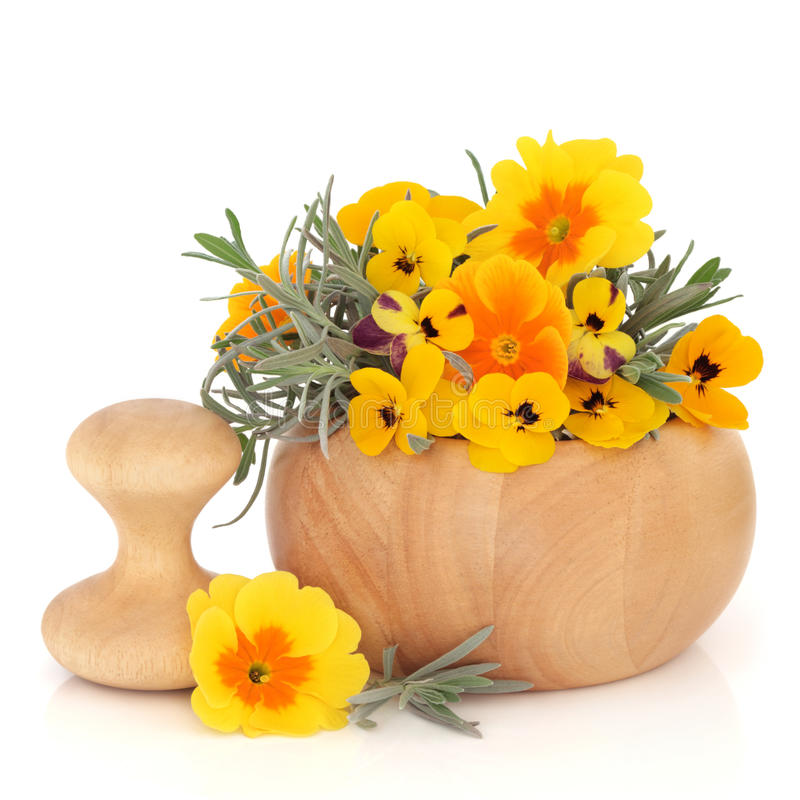 Download Skincare Herbs and Flowers stock image. Image of mortar - 16956441