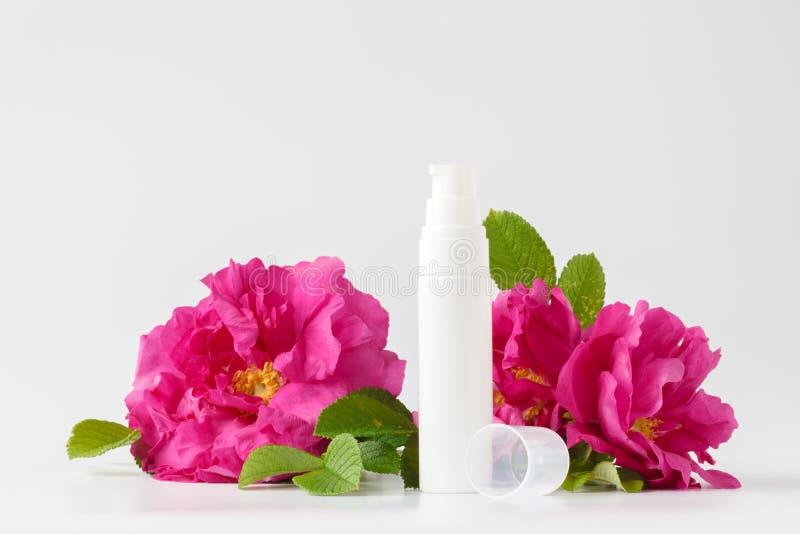 Skincare skönhetbehandling med steg royaltyfri foto