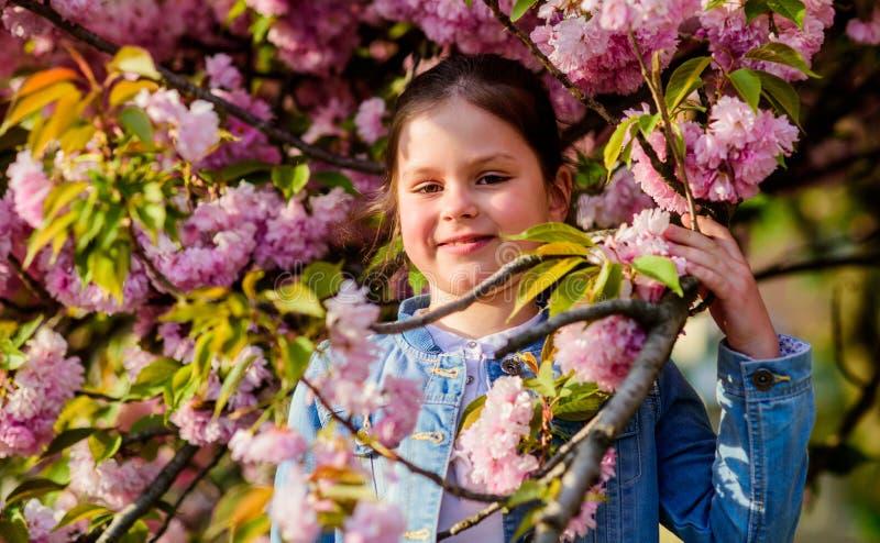 Skincare spa Φυσικά καλλυντικά για το δέρμα ευτυχές κορίτσι στο λουλούδι κερασιών Άνθιση δέντρων Sakura το μικρό κορίτσι ανθίζει  στοκ εικόνες