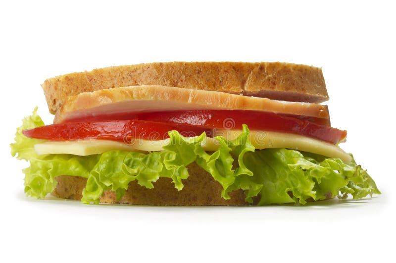 skinksmörgås royaltyfria bilder