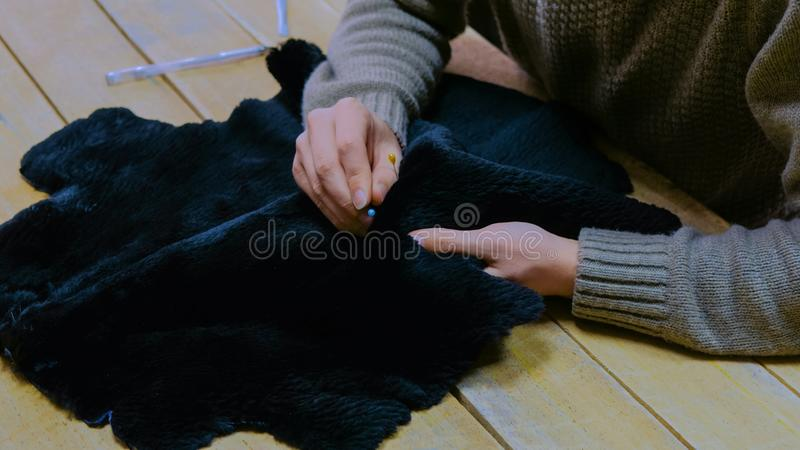 Skinner working with beaver fur skin. Professional male skinner, furrier working with beaver fur skin at atelier, workshop. Fashion and leatherwork concept stock image
