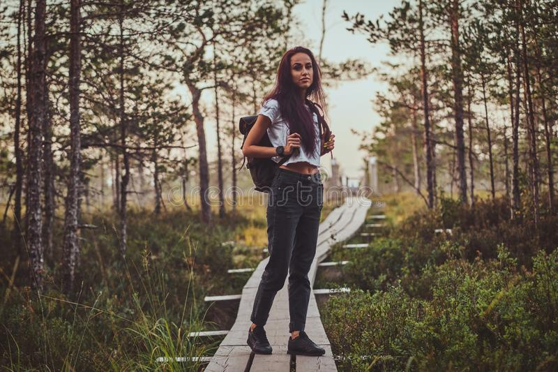 Skinny woman is hiking by the wooden path in the middle of lush pine forest. Skinny young woman is hiking by the wooden path in the middle of lush pine forest stock image