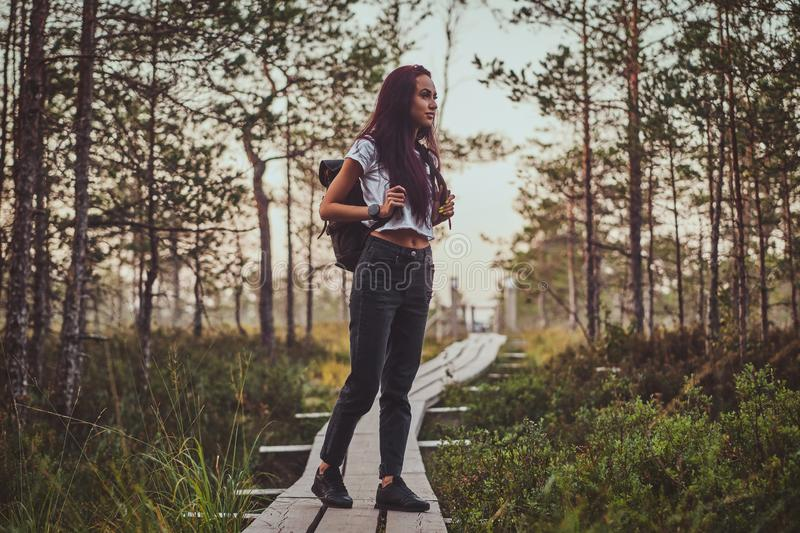 Skinny woman is hiking by the wooden path in the middle of lush pine forest. Skinny young woman is hiking by the wooden path in the middle of lush pine forest stock photos