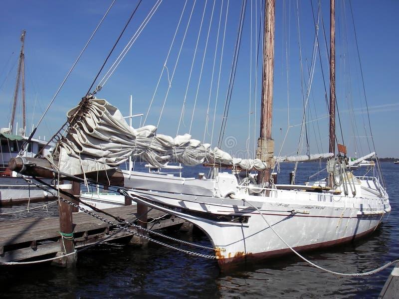 skipjack chesapeake залива стоковая фотография