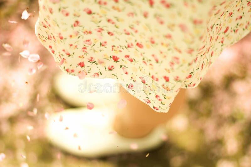 skirt fotografie stock