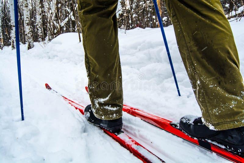 Skis stock photos