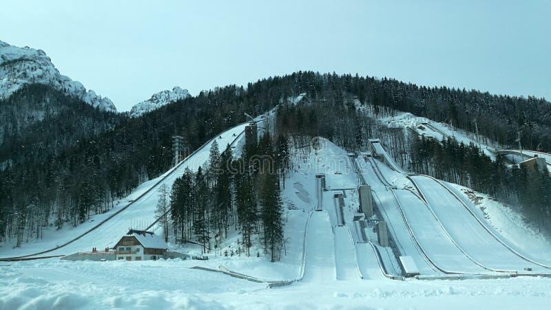 Skispoor royalty-vrije stock fotografie