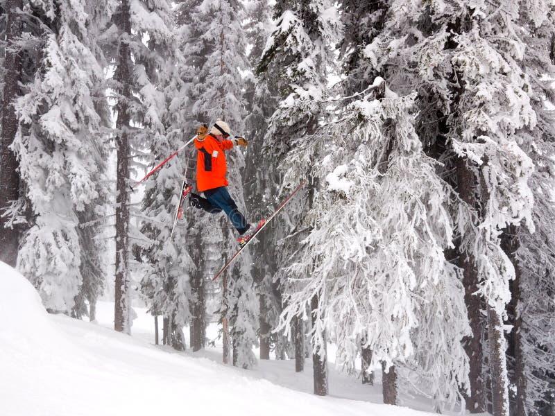 Skisprung stockbild