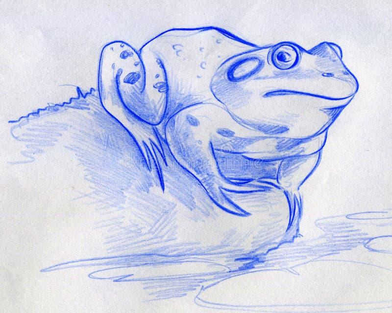 Skissa av en blå groda vektor illustrationer