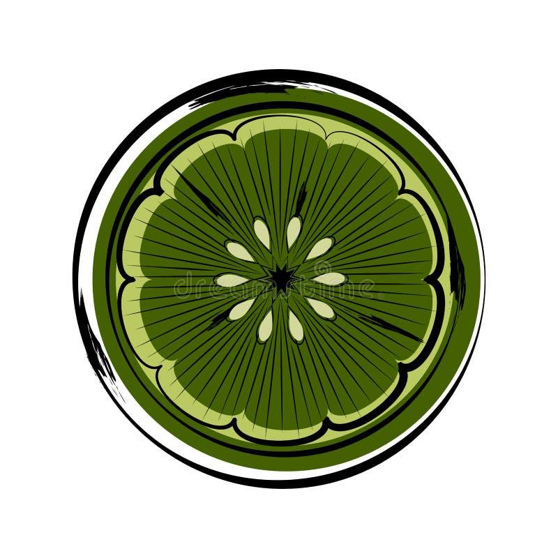 Skissa av en främre sikt av en klippt limefrukt stock illustrationer