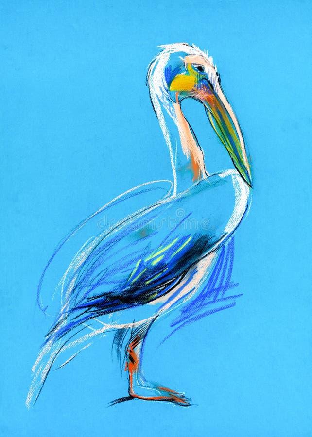 Skissa av en pelikan stock illustrationer