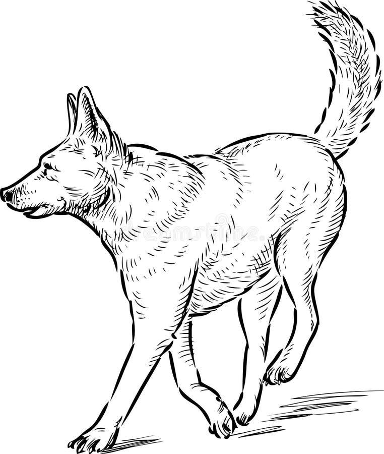 Skissa av en rinnande herdehund stock illustrationer