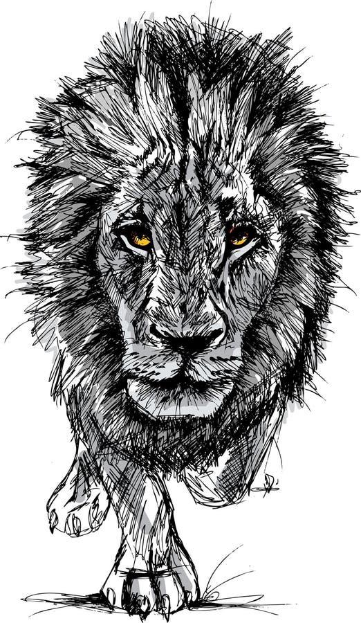 Skissa av en stor male afrikansk lion royaltyfri illustrationer