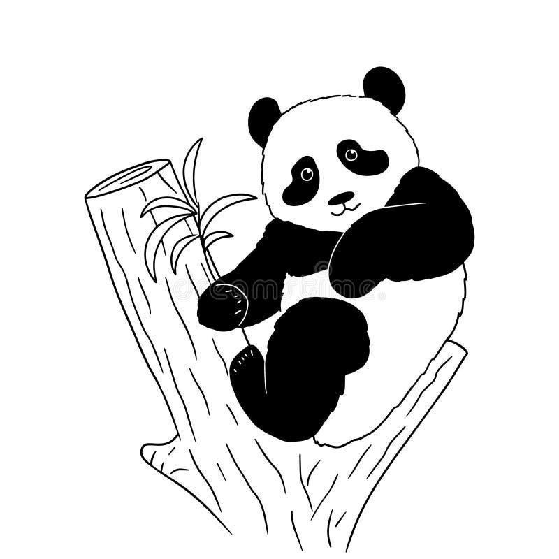 Skissa av en tecknad filmpanda på träd på vit bakgrund Vektorillustration av den utdragna svartvita pandan för hand vektor illustrationer