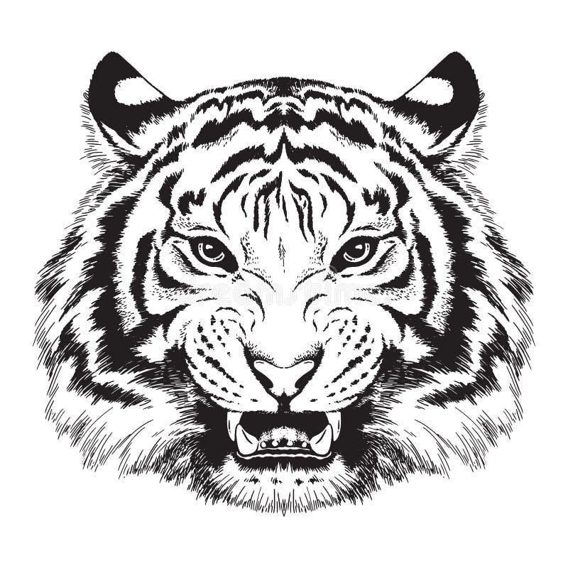 Skissa av en tigers framsida royaltyfri illustrationer